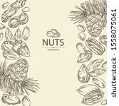 background with nuts  almonds ... | Shutterstock .eps vector #1558075061