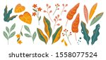 set of abstract colorful leaves.... | Shutterstock .eps vector #1558077524