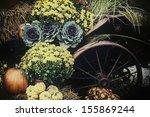 Autumn Decor.  Pumpkins  Squash ...
