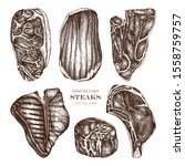raw meat top view sketches... | Shutterstock .eps vector #1558759757