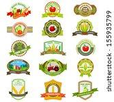 vector illustration of organic... | Shutterstock .eps vector #155935799
