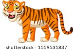 Cartoon Tiger Isolated On White ...
