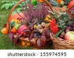 Colorful Autumn Decorations In...