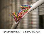 Small photo of Disconnect is close up. Damaged insulating material of a stranded telephone wire. Gap color telecommunication cable. Concept of poor internet connection and communication problems.