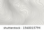 the stylized height of the... | Shutterstock .eps vector #1560015794