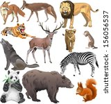 set of different wild animals.... | Shutterstock .eps vector #156056537