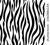 zebra skin  stripes pattern.... | Shutterstock .eps vector #1560886154