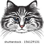 vector sketch of a long haired... | Shutterstock .eps vector #156129131