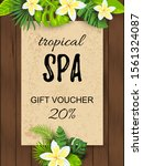 tropical backdrop with exotic... | Shutterstock .eps vector #1561324087