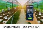 Farmers Hand Hold Smartphone...