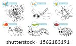 connect dots cartoon insects... | Shutterstock .eps vector #1562183191