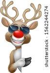 christmas reindeer red nosed... | Shutterstock .eps vector #1562244274