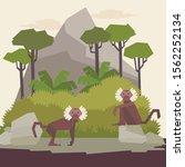 vector illustration of monkeys... | Shutterstock .eps vector #1562252134