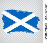 flag scotland from brush...