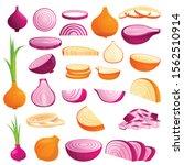 onion icons set. cartoon set of ...