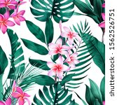 tropical seamless pattern with... | Shutterstock . vector #1562526751