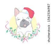 christmas card. image portrait...   Shutterstock .eps vector #1562536987