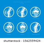 set of icons of the joints and... | Shutterstock .eps vector #1562559424