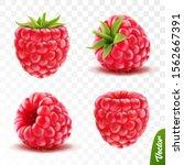 3d realistic transparent... | Shutterstock .eps vector #1562667391