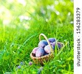 plums | Shutterstock . vector #156283379