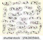 elegant scroll elements of... | Shutterstock .eps vector #1562835661