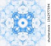 halftone blue ornament  winter... | Shutterstock .eps vector #1562977594
