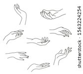 woman's hand collection line.... | Shutterstock .eps vector #1563224254
