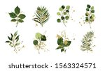 gold green tropical leaves... | Shutterstock .eps vector #1563324571