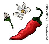 doodle illustration of red hot... | Shutterstock .eps vector #1563655381