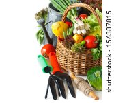 Fresh farm vegetables in a basket and garden tools on a white. - stock photo