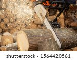 Chainsaw In Action Cutting Wood....