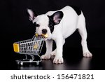 Stock photo french bulldog playing with a supermarket cart funny little dog 156471821