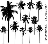 vector collection of coconut... | Shutterstock .eps vector #1564872454