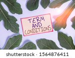 Small photo of Text sign showing Term And Conditions. Conceptual photo Policies and Rules where one must Agree to Abide Leaves surrounding notepaper above an empty soft pastel table as background.