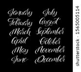 calligraphic set of months of... | Shutterstock .eps vector #1565005114