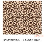 leopard print  leopard print... | Shutterstock .eps vector #1565544034