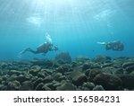 marine life with beautiful sun... | Shutterstock . vector #156584231