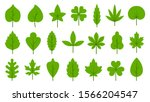 green leaf flat cartoon icons... | Shutterstock .eps vector #1566204547