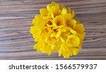 Bouquet Of Sternbergia Lutea ...