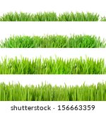 collage of green grass isolated ... | Shutterstock . vector #156663359