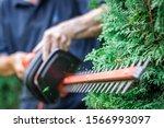 Gardener Trimming Overgrown...