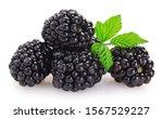 Fresh Blackberry Isolated On...
