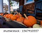 Pumpkins And Gourds Represent A ...