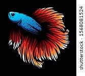 betta fish vector illustration... | Shutterstock .eps vector #1568081524