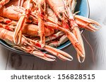 Closeup of cooked scampi with pincers - stock photo