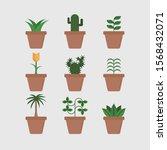 garden potted plants on white... | Shutterstock .eps vector #1568432071
