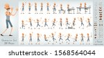 cartoon flat cute funny boxer... | Shutterstock .eps vector #1568564044