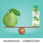 compare guava and balance with... | Shutterstock .eps vector #1568622334