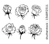 floral set. hand drawn