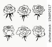 floral set. hand drawn... | Shutterstock .eps vector #156892517